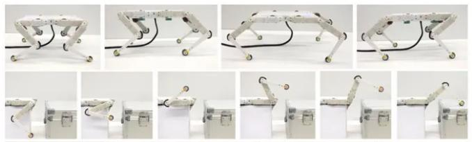 创想三维:借助3D打印技术 打造开源低成本四足机器狗Solo 8