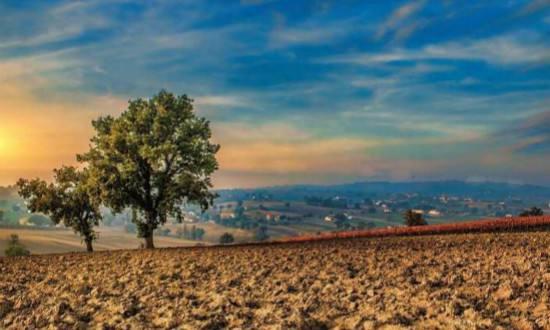 新型土壤分析仪是什么