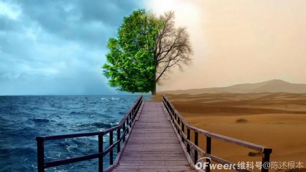 陈根:气候变化埋下危机伏笔,警钟长鸣