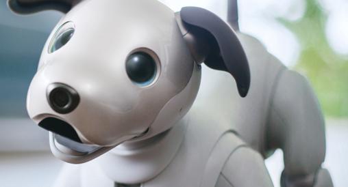 时隔多年,索尼AIBO机器狗卷土重来,仅仅30分钟就售罄