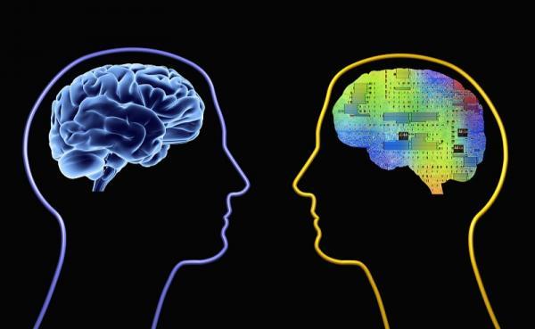 "AI芯天下丨新锐丨拥有""嗅觉""的新神经算法芯片"