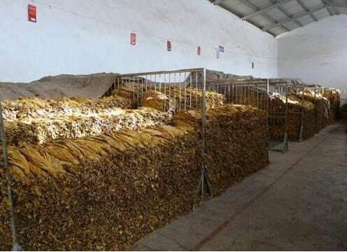 上海逻迅丨传感器应用于烟草保存环境中温湿度的检测