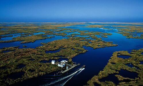 AMT水质传感器用于检测池塘养殖中硫化氢的浓度