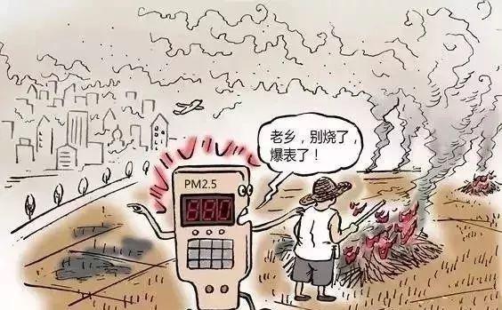 PM2.5传感器在秸秆焚烧监测中的应用