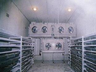 氨气传感器在冷冻库中的应用