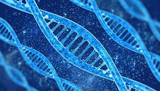 微液体流量计在基因测序的流体控制中的应用解决方案