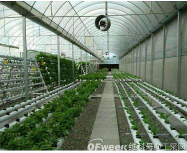 温室大棚种植高产离不开二氧化碳传感器