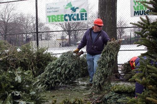 圣诞节也要注重环保!看看这些国家是怎么做的