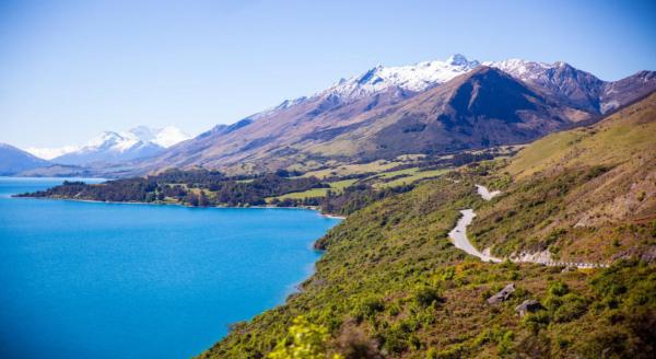 在新西兰家庭中约30%拥有储能电池