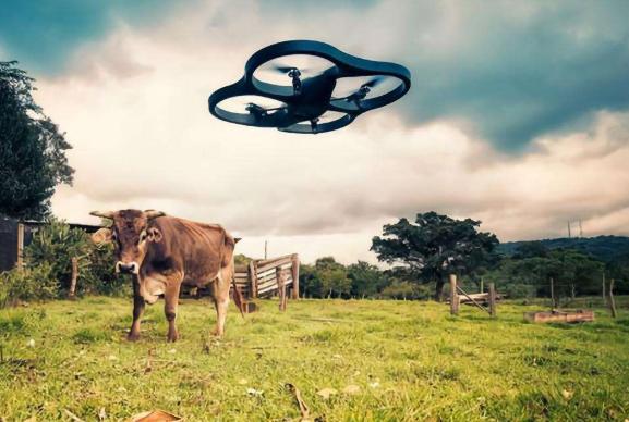 巨頭們AI的角力戰正向農村滲透