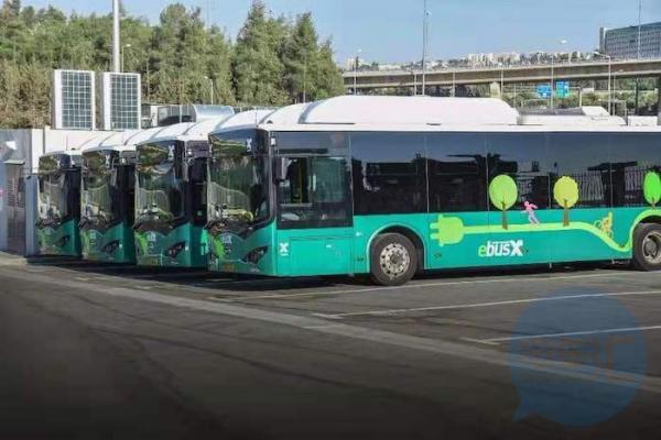 西宁市:2024年底前,城市公交线路全部实现纯电动车