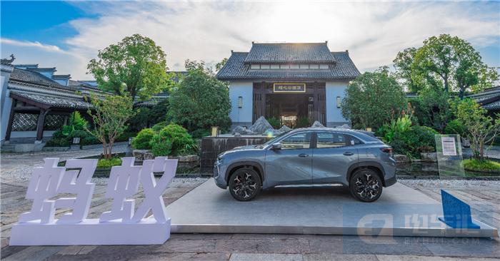 动态体验不错,奇瑞新能源蚂蚁是一款值得购买的车