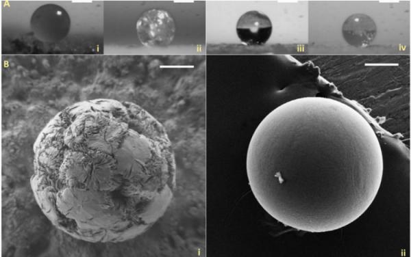 用SPHRINT為新型藥物輸送系統打印3D微觀結構