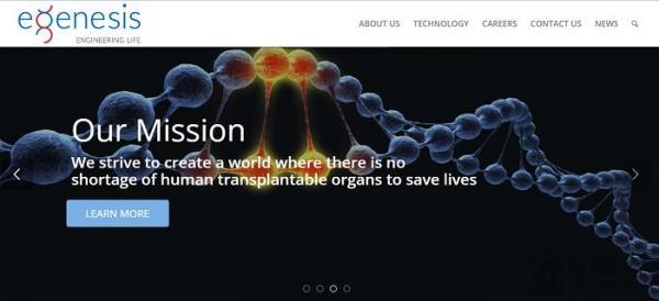8家值得关注的基因编辑公司:基因大牛的创业项目,涵盖罕见病治疗到器官移植