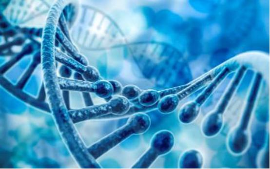 新材料情报NMT | 医用生物材料与3D打印的新碰撞