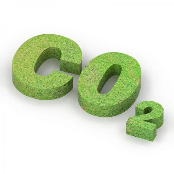 新材料情报NMT | 可持续 | 地方试点如何应对全国碳市场来临