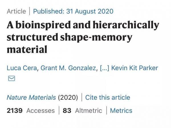 陈根:头发的形状记忆如何启发时装业?