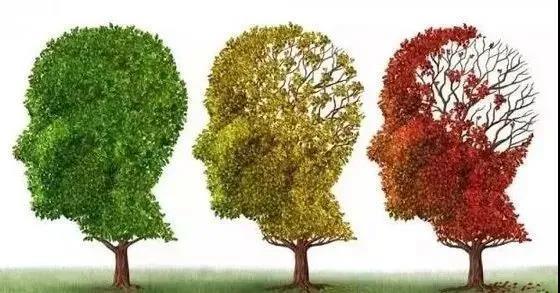 陈根:心理状态将如何影响老年痴呆?