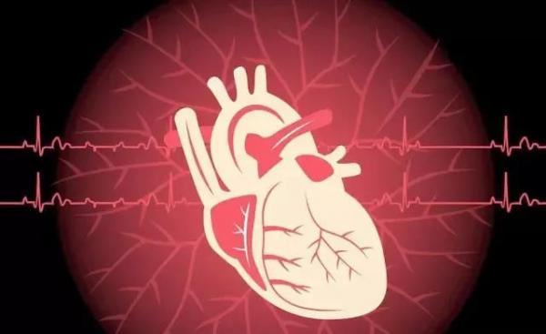 陈根:柔软材料打破刚性电子贴片困境,可监测治疗受损心脏