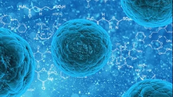 陈根:癌细胞的转移图谱,揭秘癌症死因之谜