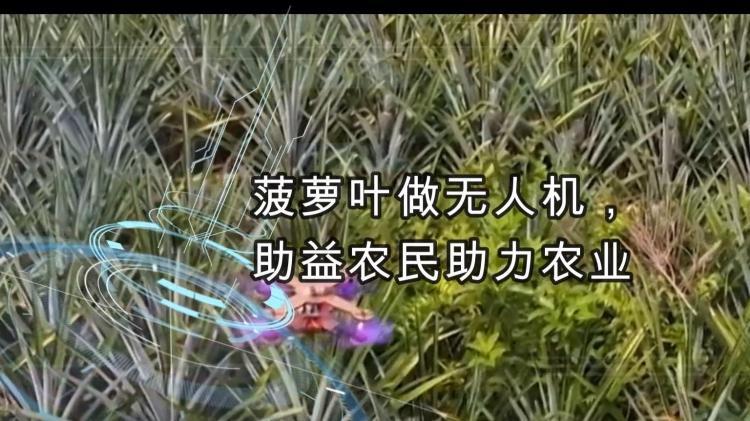 菠萝叶做无人机,助益农民助力农业