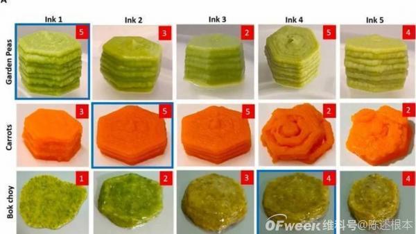 陈根:3D打印新鲜食材,未来的食物选择