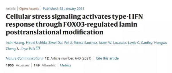 陈根:FOXO3,长寿人群的长寿基因