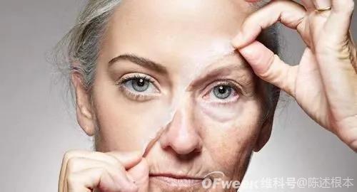 """陈根:干细胞助力肌肉再生,年老不再""""力""""衰"""