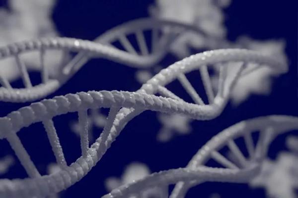 陈根:肿瘤抑制基因失活,癌细胞实现免疫逃逸