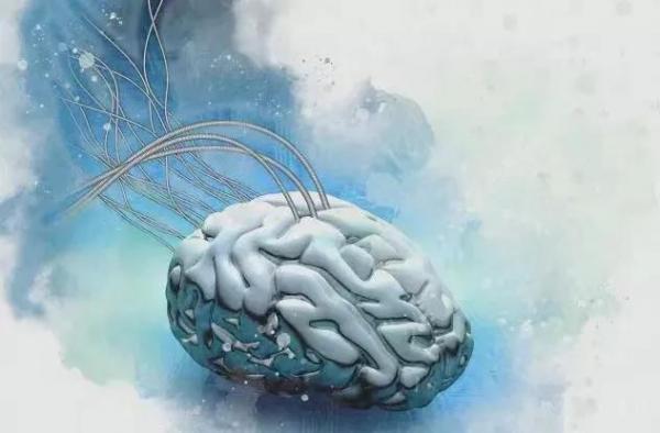 """陈根:拟用神经形态芯片,""""复制粘贴""""人脑"""