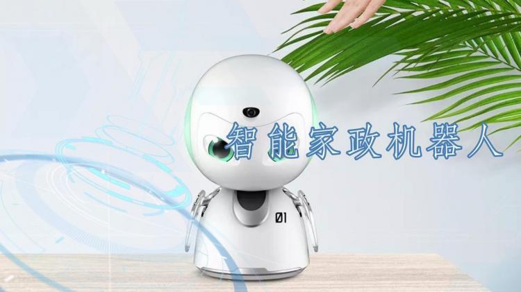 智能家政机器人