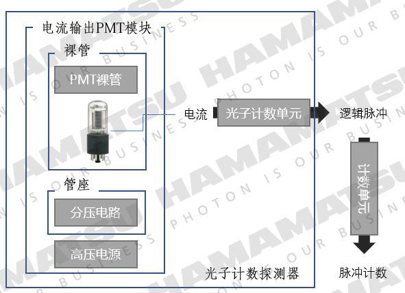 关于光电倍增管(PMT)模块的选型与使用