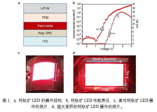 中科大研发高效率、大面积的钙钛矿LED