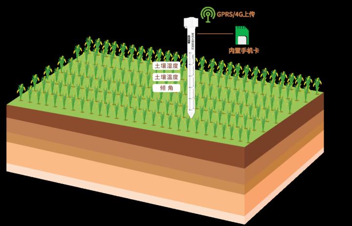 农业四情监测系统的应用