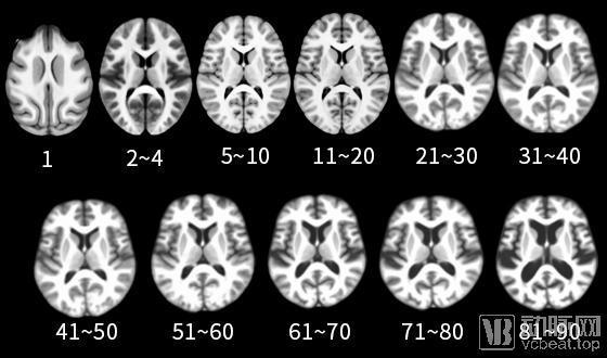 脑医生Dr.Brain完成数千万元A轮融资,全方位展开商业网点布局