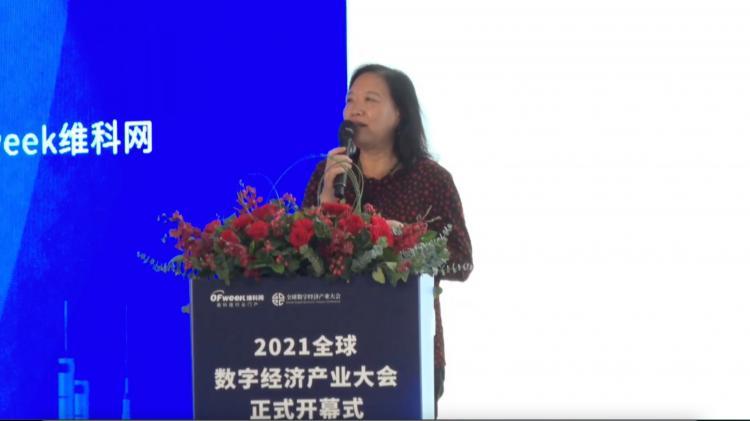 知名专家王晓红分享数字化平台企业在构建新发展格局中的战略作用