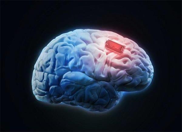脑芯片:是人脑增强仪还是定时引爆器?