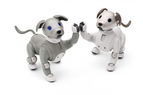 除了卖萌,还要管家 AI狗狗再次进化