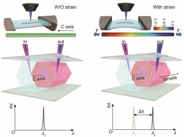 中国科学院单模激光输出与动态调控研究获进展