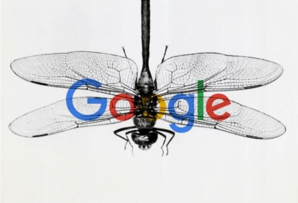 超千名员工联合抗议、7名员工集体离职,谷歌新项目引争议