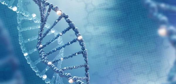 """深度   从基因编辑到人工智能,人类""""有所为,有所不为""""的界限到底在哪?"""